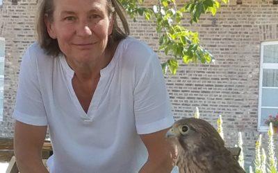 Wie ein Falkenjunges: Ayurveda und die Übung des Lebens